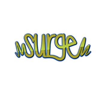 @surgekids Profile Image | Linktree