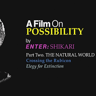 @entershikariofficial A Film On Possibility - Episode Two Link Thumbnail   Linktree