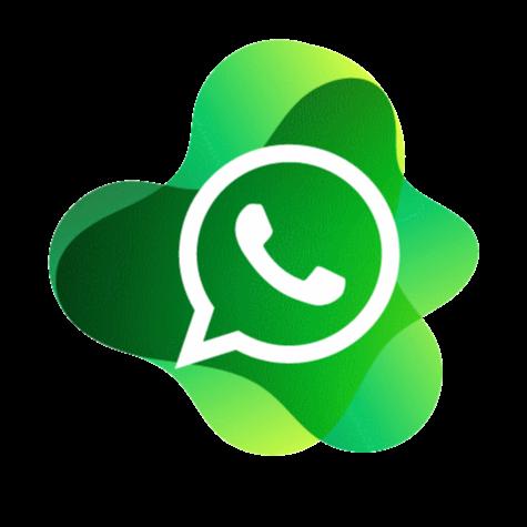 @ZayActu Whatsapp groupe 5 Link Thumbnail   Linktree