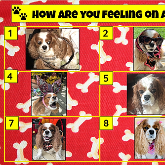 Miss Hecht Teaches 3rd Grade How are you feeling? Truffle Link Thumbnail | Linktree
