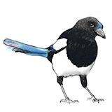 @louskelton Profile Image | Linktree