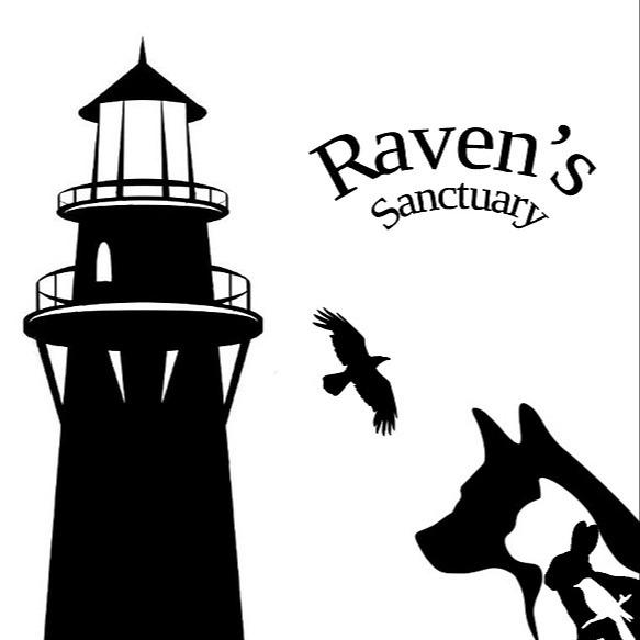 Association RAVEN RAVEN'S SANCTUARY : Blog Link Thumbnail   Linktree