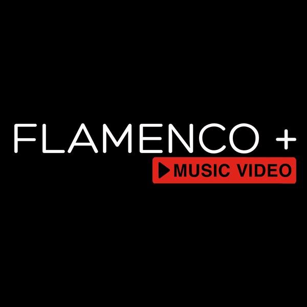 @Flamenco.Plus Profile Image | Linktree