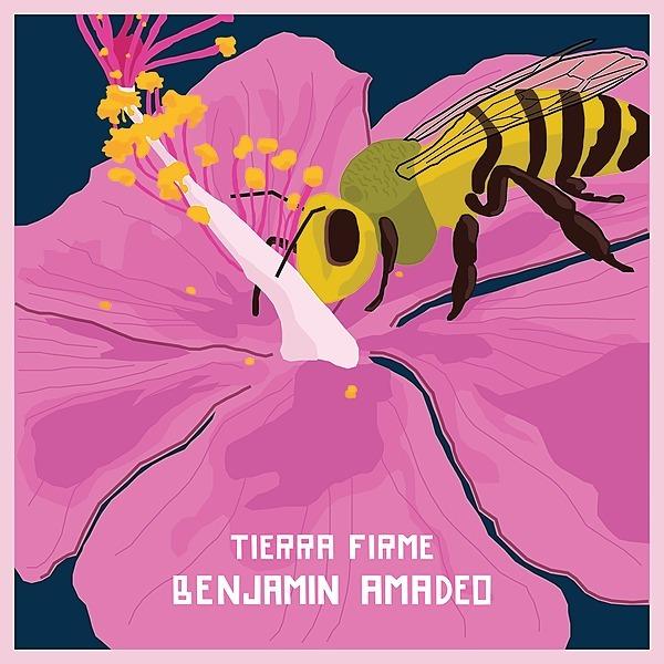 @Benjamadeo (BenjaAmadeo) Profile Image | Linktree
