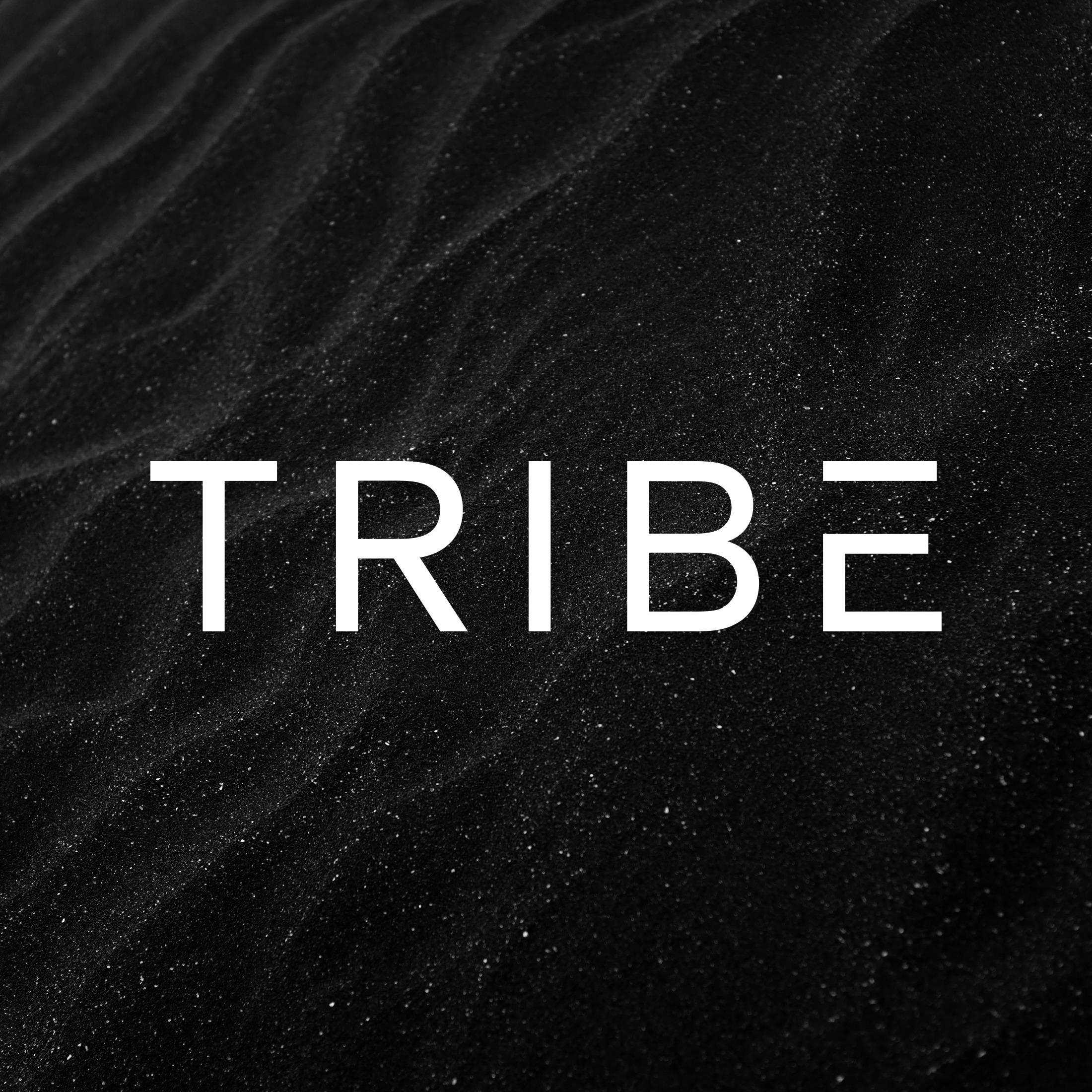 @WeAreTRIBE Profile Image | Linktree