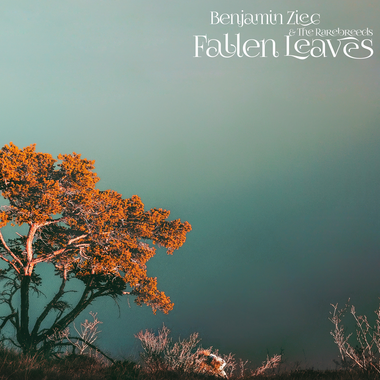 PLX035 • Benjamin Zięć  • Fallen Leaves