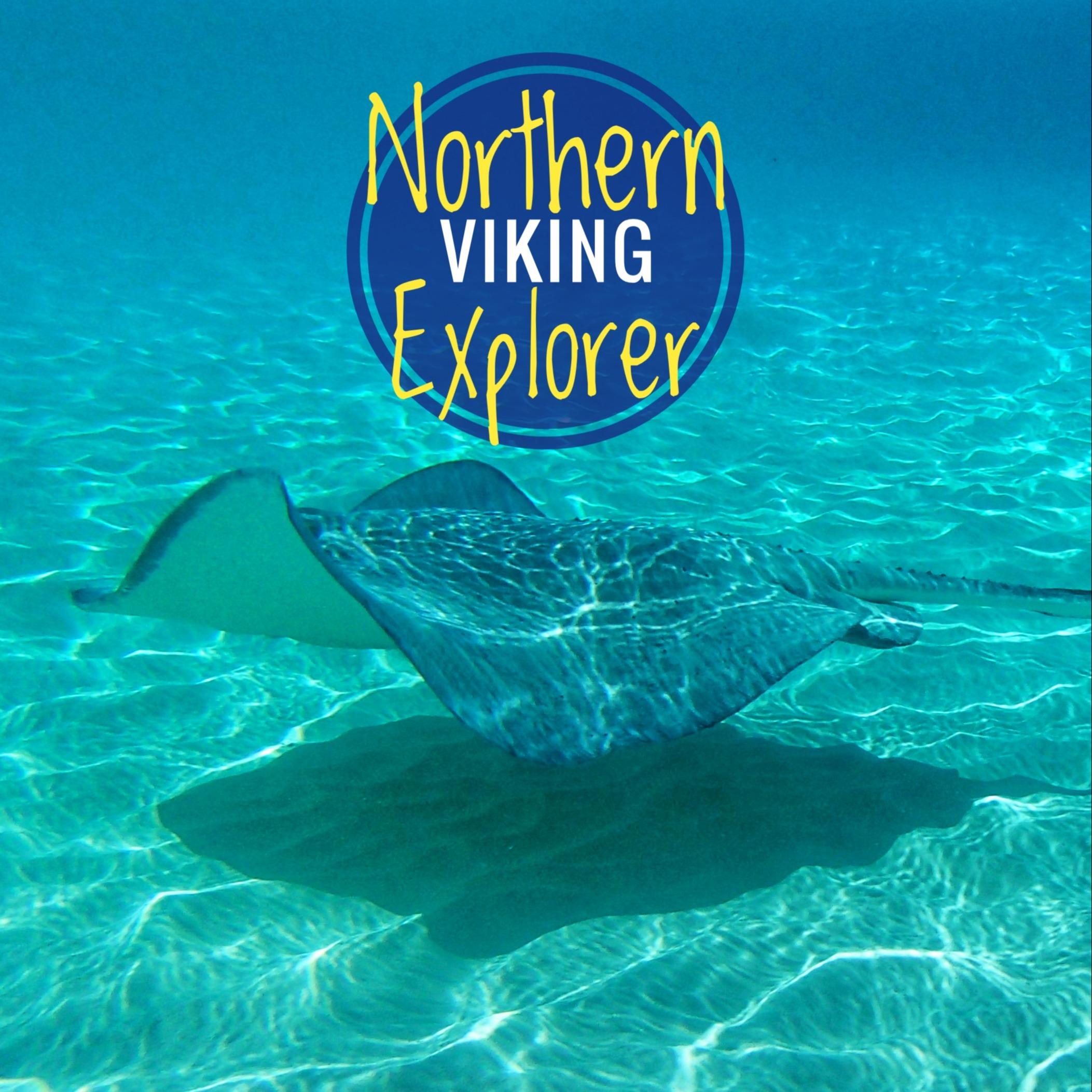 @NorthernVikingExplorer Profile Image | Linktree