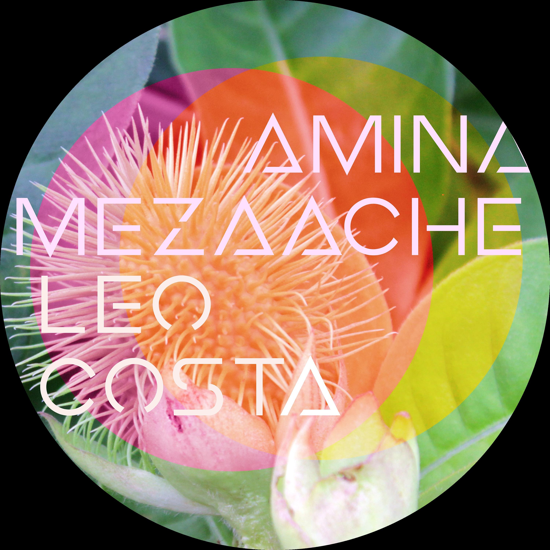 @AminaMezaache_LeoCosta Profile Image | Linktree