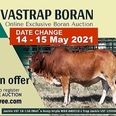 Vastrap Swiftvee Online Auction