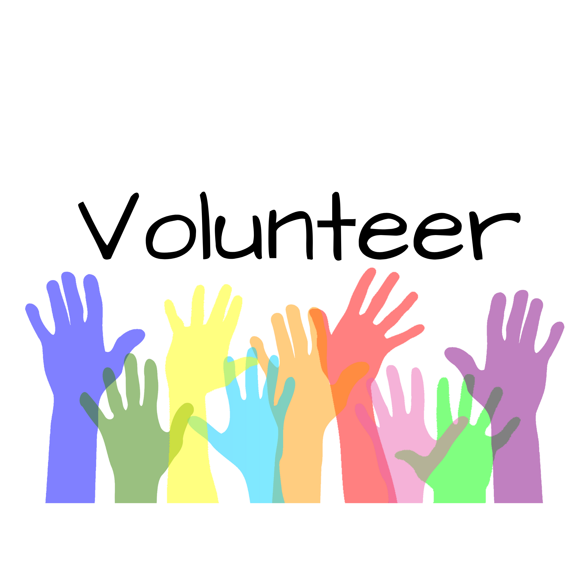 Give Me Shelter Project Volunteer Application Link Thumbnail | Linktree
