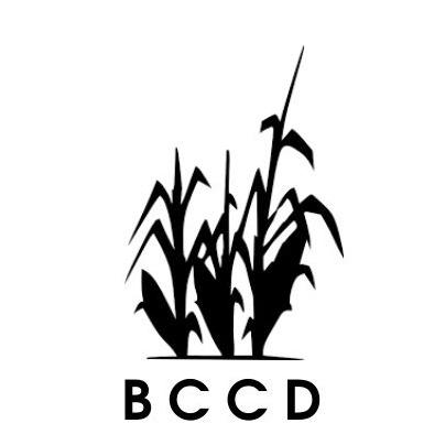 Blue Corn Custom Designs (bccdofficial) Profile Image | Linktree