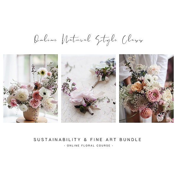 Mabel M Creative Collective Online Course   Natural Style Bundle (Sustainability & Fine Art)  Link Thumbnail   Linktree