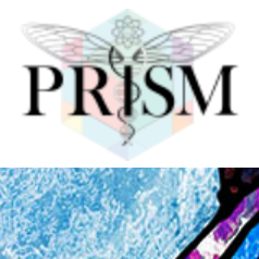 Steve McDonald Psychedelic Research in Science & Medicine (PRISM) Link Thumbnail | Linktree
