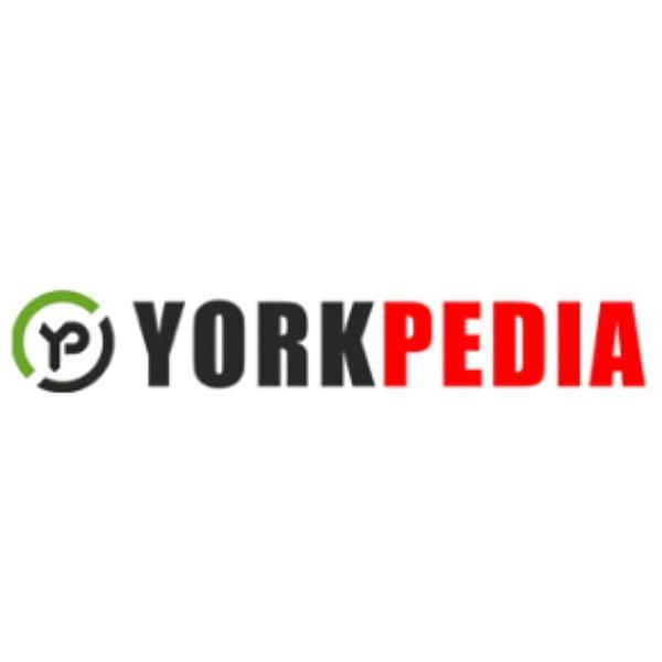 @Zarbo YorkPedia - Zarbo Review by Eva Schmidt Link Thumbnail   Linktree