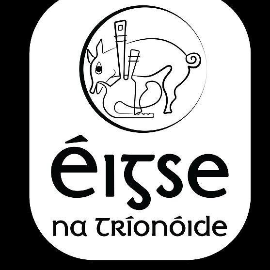 @EigsenaTrionoide Profile Image | Linktree