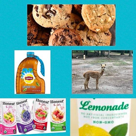 Cookies & Alpacas