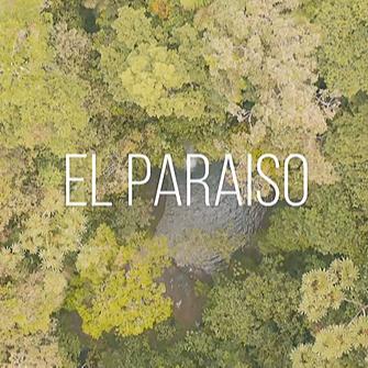 @NacionEkeko Videoclip¨ El Paraiso¨ junto a Julieta Venegas Link Thumbnail | Linktree