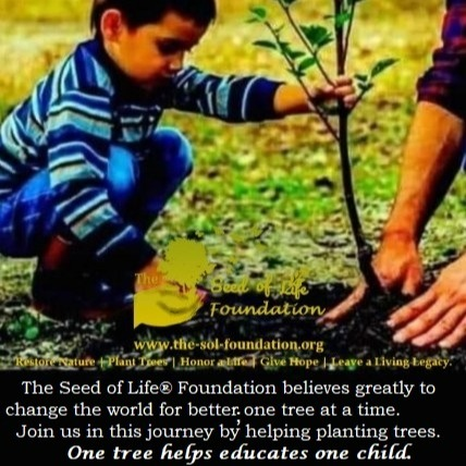 The Seed of Life Foundation Facebook Link Thumbnail | Linktree