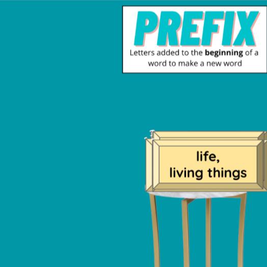 Miss Hecht Teaches 3rd Grade Prefix & Suffix  Link Thumbnail | Linktree